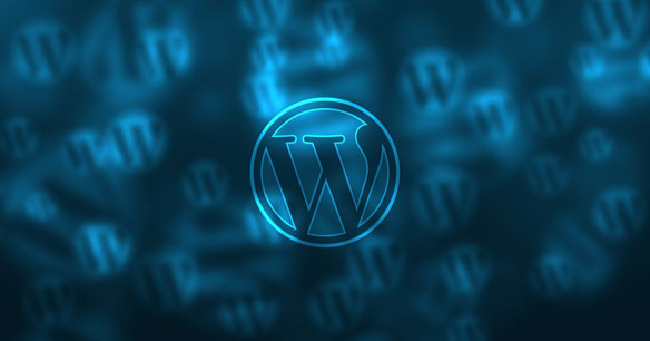 WordPress – The Most Popular CMS!